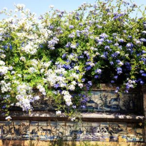 Azulejos in the palace garden, Palacio Fronteira